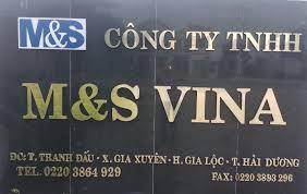 Công Ty TNHH M&S Vina